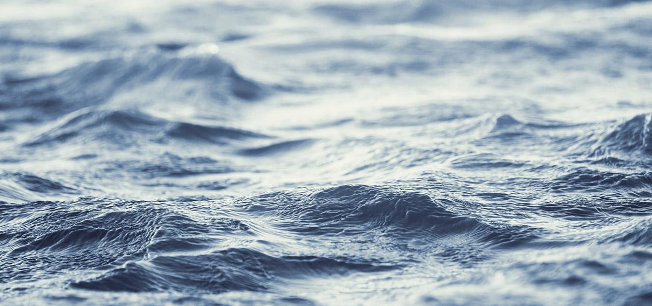 Visuel protégeons nos océans SAPMER
