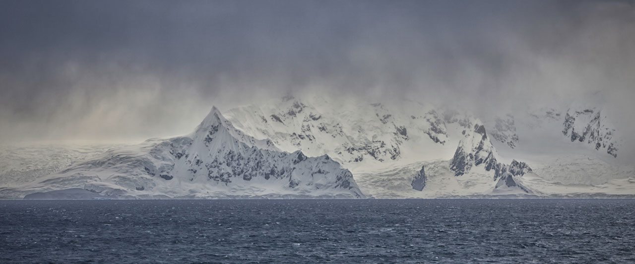 Background légine antarctique SAPMER