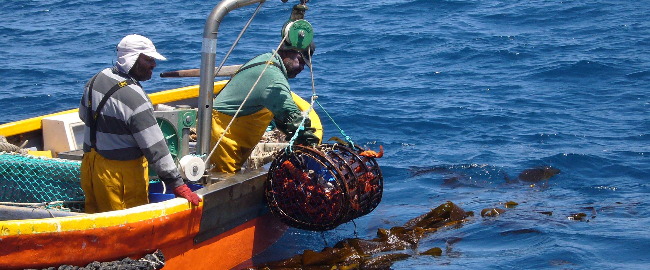Gestion des ressources marines