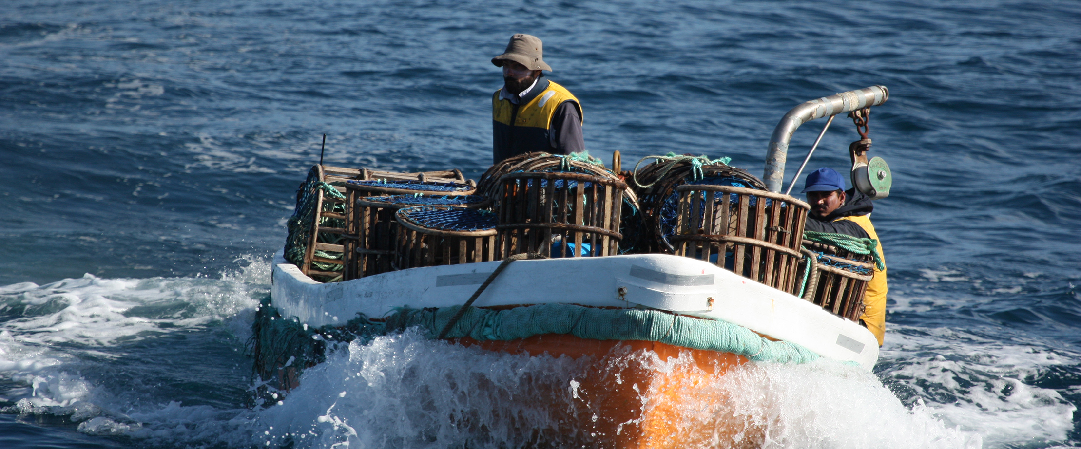 Sapmer pêche langouste australe