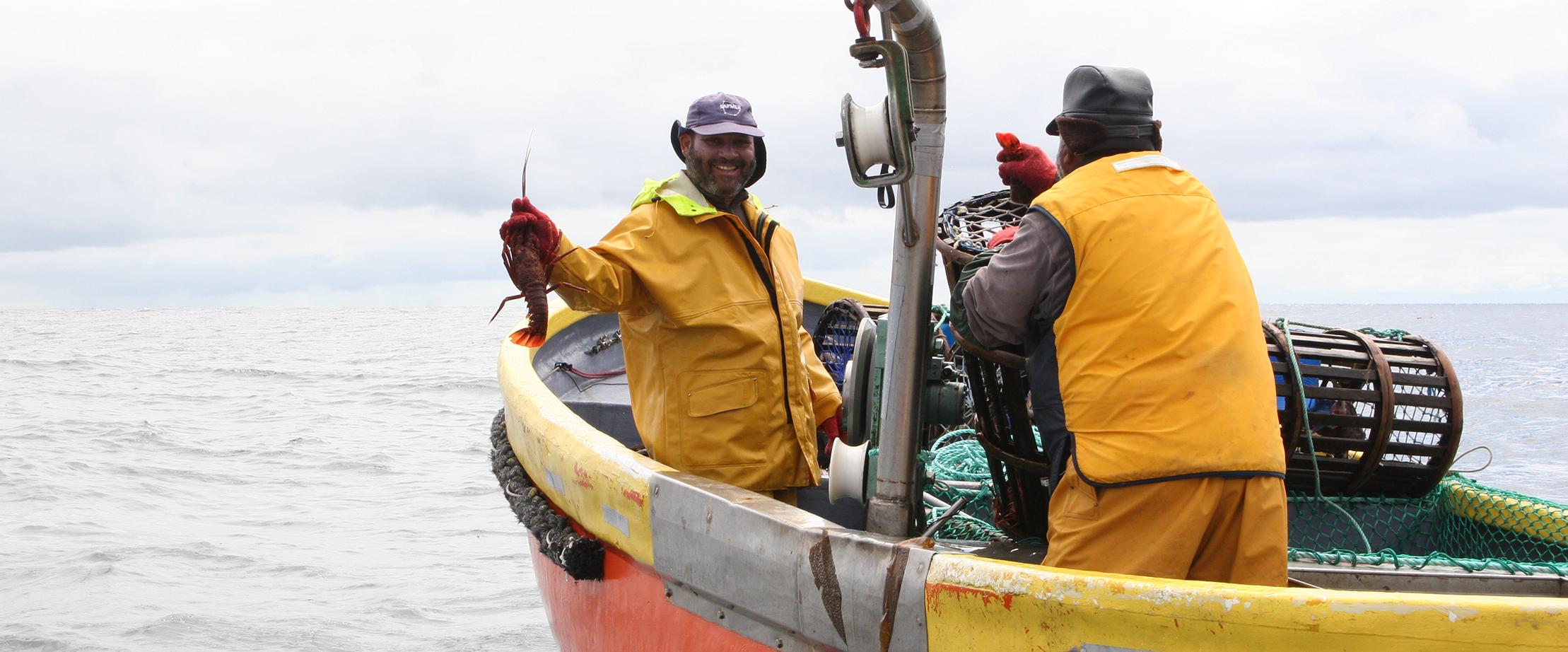 Pêcheurs langouste australe Sapmer